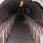 Wine_cellar underground